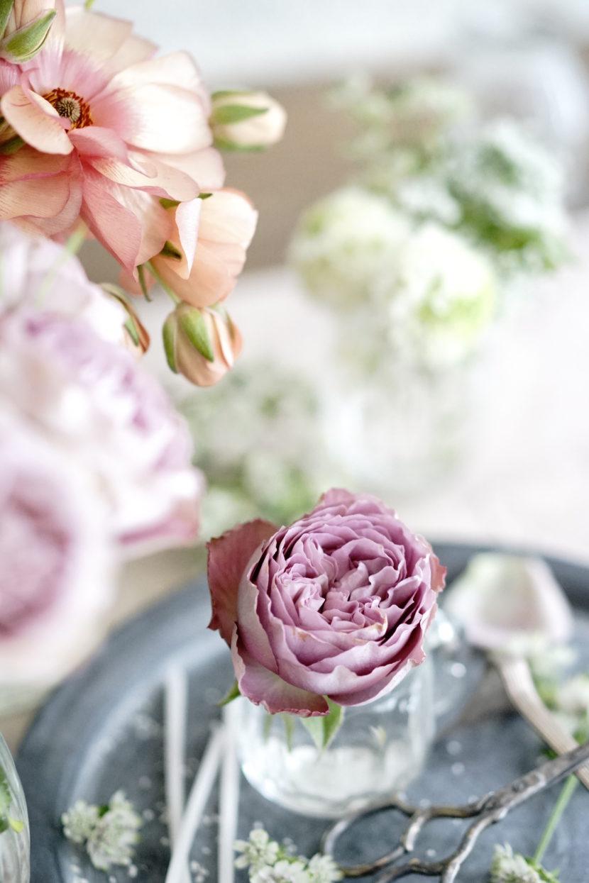 バラのスタイリング写真